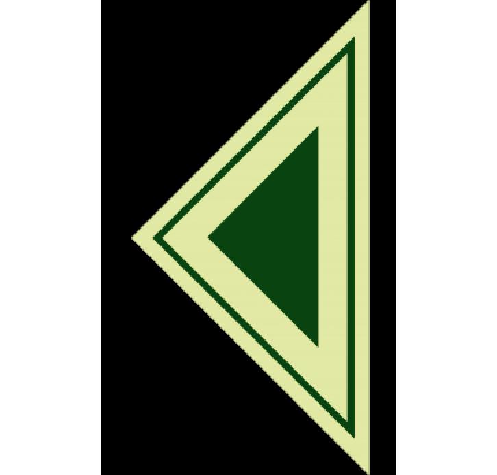 שילוט פולט אור חץ ירוק גדול