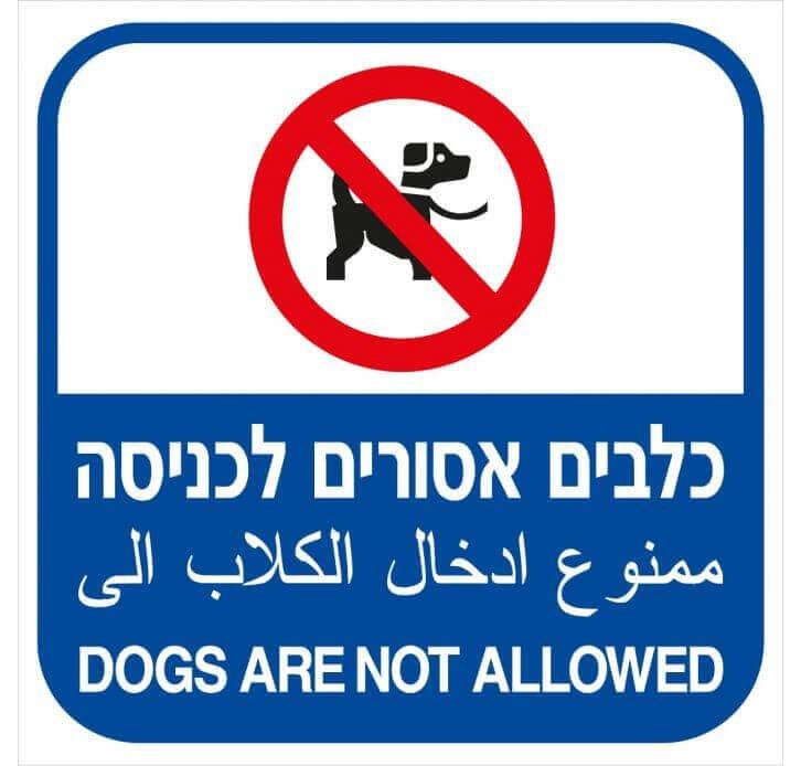 שילוט בריכות שחיה - כלבים אסורים לכניסה 3305